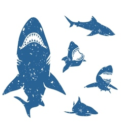 Set of Sharks vector image