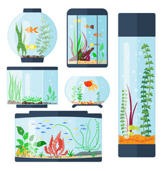 transparent aquarium isolated vector image