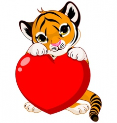 cute tiger cub holding heart vector image vector image