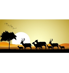 deer family silhouette vector image vector image
