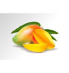 Fresh mango with slice isolated on white vector