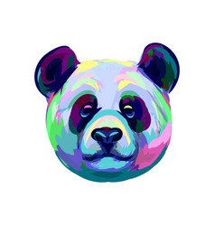 portrait a panda bear head from a splash of vector image