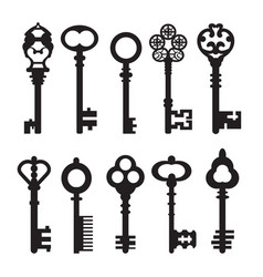 isolated graphical retro keys vector image