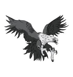 Bald Eagle or Hawk Head Mascot Graphic vector image