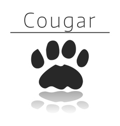 Cougar animal track vector image vector image