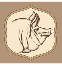 Pig head in engraving style vector image vector image