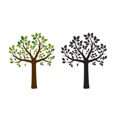 two trees vector image