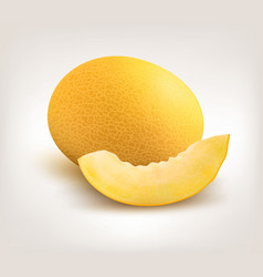yellow honeydew melon on white background vector image vector image