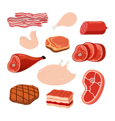 bacon chicken smoked ham cartoon style vector image