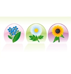 Set of three flower icons vector