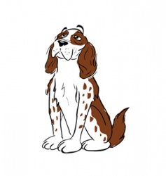 spaniel dog sitting vector image