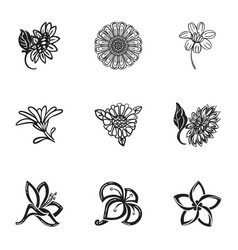 sun flower icon set simple style vector image