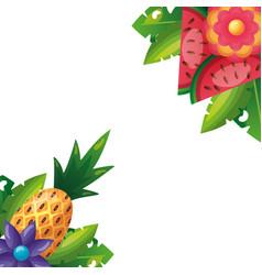 tropical pineapple watermelon flower leaves vector image