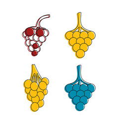 grapes icon set color outline style vector image