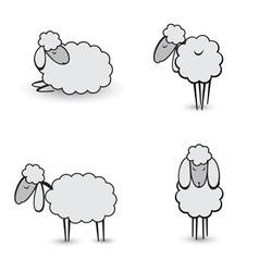 gray sheeps vector image
