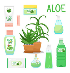 aloe vera plant and products vector image