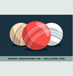 Cricket balls icon game equipment professional vector