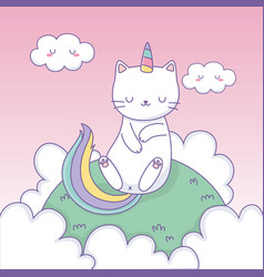 cute cat with rainbow tail in camp kawaii vector image