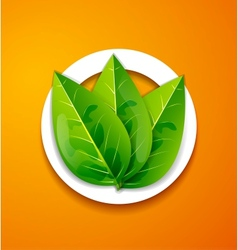 Nature applique background Green leaves vector image vector image
