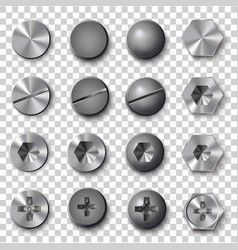 set of screws and bolts on transparent background vector image