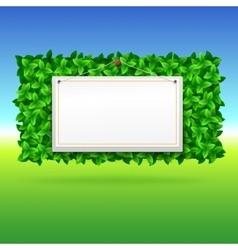 Summer background leaves vector image vector image