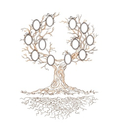 graphic genealogical branchy tree vector image vector image