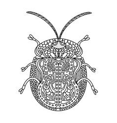 Beetle turtle coloring book tortuga vector