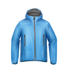 blue unisex jacket vector image