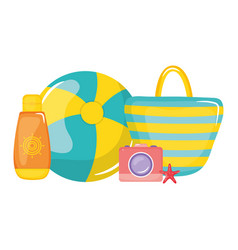 Handbag female with balloon plastic toy and camera vector