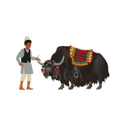Man with domestic yak vector