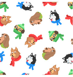 pattern dog in scarf vector image