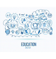 school education infographic vector image