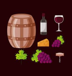 Wine bottle barrel grapes collection vector
