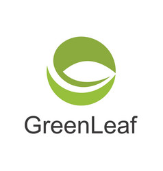 circle green leaf abstract logo vector image