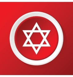 David star icon on red vector image