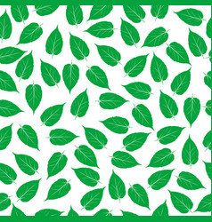 green leaves on white background vector image vector image