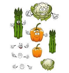 Cartoon asparagus cauliflower and bell pepper vector image