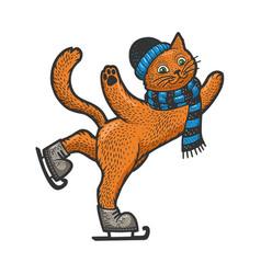 cat on skates sketch vector image