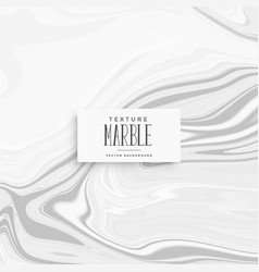 elegant gray marble texture with smooth pattern vector image