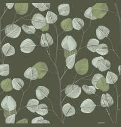 seamless pattern with hand drawn eucalyptys vector image