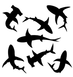 Shark silhouettes vector image vector image
