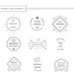 Organic food labels and elements vector image