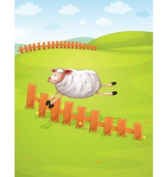 a sheep in a farm vector image vector image