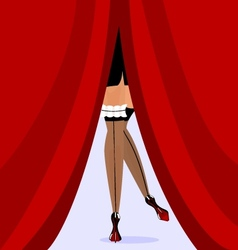 feet and red curtain vector image