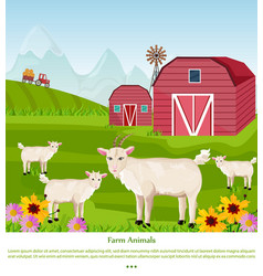 goats at the farm red village house green vector image