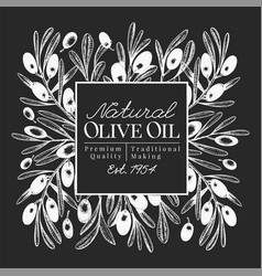 hand drawn olive design template olives on chalk vector image
