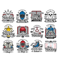 Ice hockey sport icons with sporting items rink vector