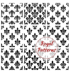 Royal floral seamless patterns set vector image
