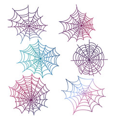 colorful spider web isolated vector image