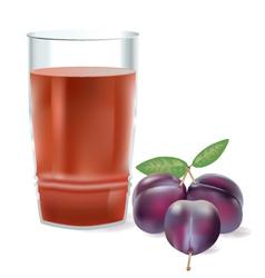 plum juice vector image vector image